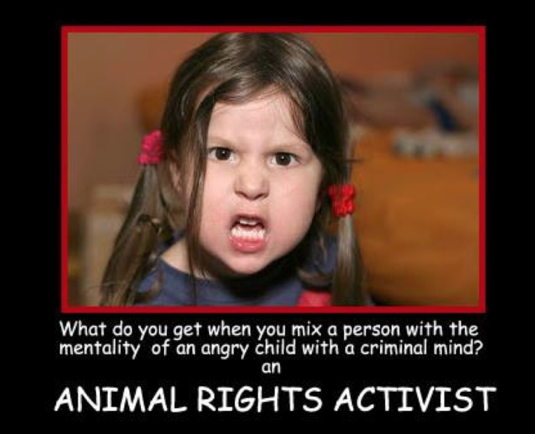 "PETA Receives Backlash Claiming Steve Irwin ""Harassed"" Animals"