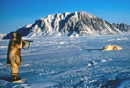 Inuit leader lashes out at greens over tribal polar bearhunting