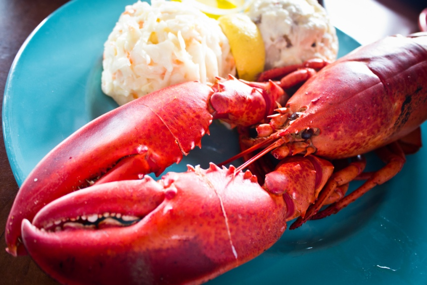 "The New York Times Pitches for Lobster ""Rights"" …. Sort Of"