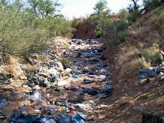 Environmental Laws Encourage BorderPollution
