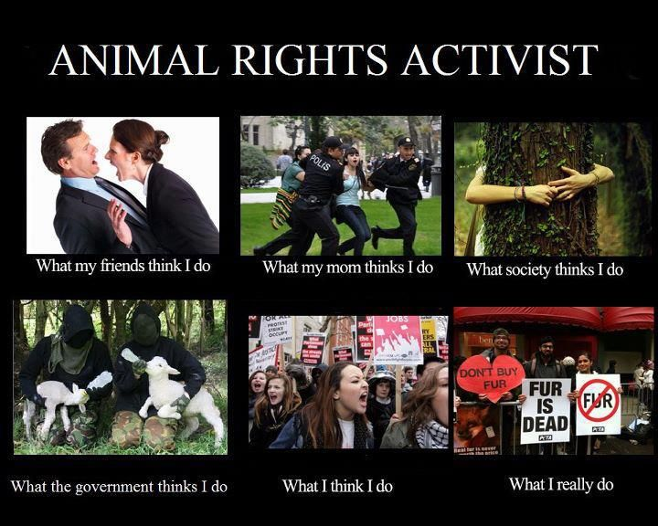 """Animal """"Rights"""" Groups Try to Shame Indigenous People For TheirConduct"""