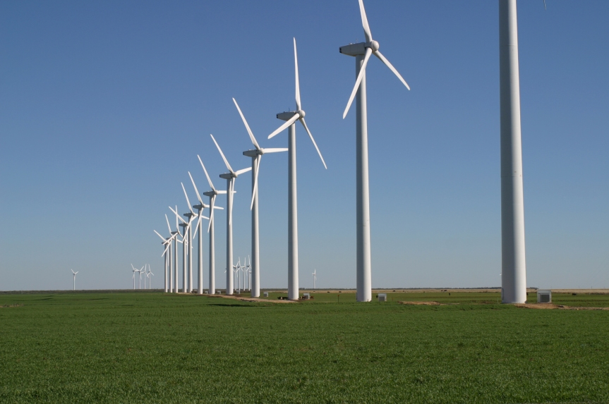 Green Killing Machines: the impact of renewable energy on wildlife andnature